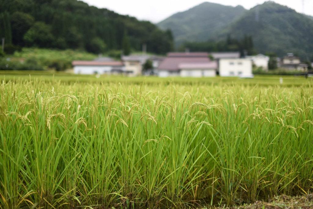 新潟県南魚沼郡湯沢町の住みやすさ・住みにくさ