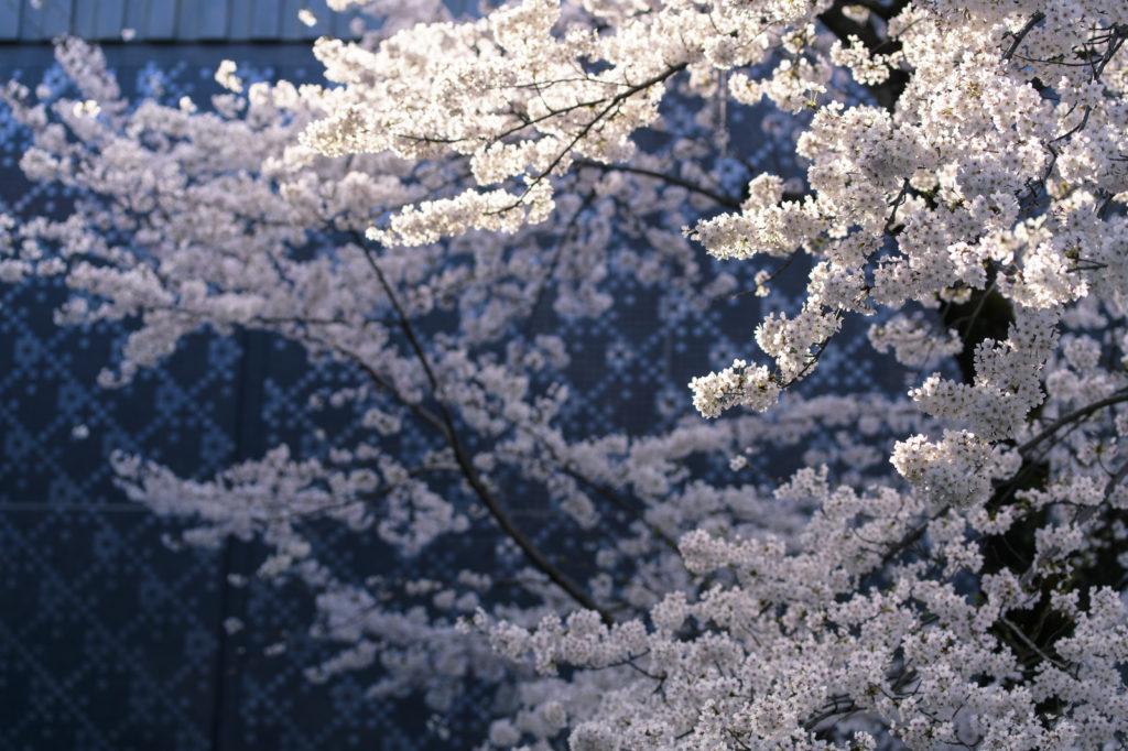 東京都目黒区の住みやすさと住みにくさについて