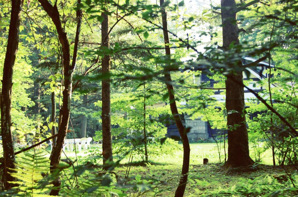軽井沢に在住3年で感じる住みやすさ、住みづらさ